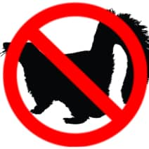 skunk wildlife removal oakville